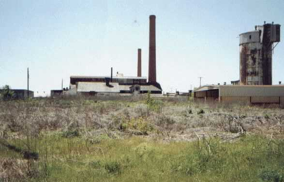 Hemingray Plant Digs #3